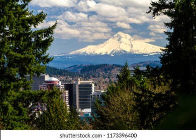 View of snow covered Mt Hood and buildings in downtown portland, Oregon