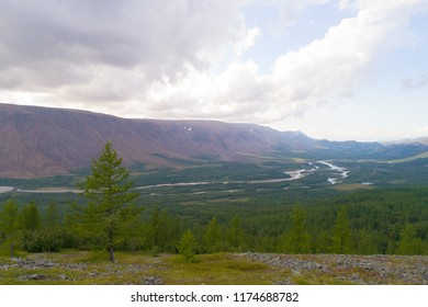View of the Sob River valley on a cloudy August day. Polar Ural Mountains, Russia