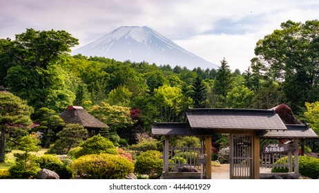 View from somewhere near Oshino Hakkai, Japan with Mt. Fuji in the background.