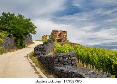 View of the Somlo wine region, Hungary
