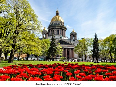View of St Isaac's Cathedral in Saint Petersburg, Russia, with the flowers in the foreground