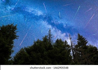 A view of the stars of the blue Milky Way with pine trees forest silhouette in the foreground. Night sky nature summer landscape. Perseid Meteor Shower observation. Colorful shooting stars.