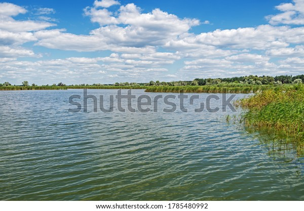 view-steppe-lake-overgrown-reeds-600w-17