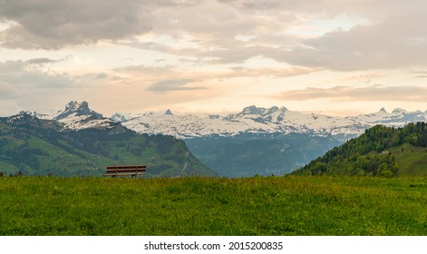 view from Stoos with the mountains in the back and a beautiful flower field in front, in the Swiss alps