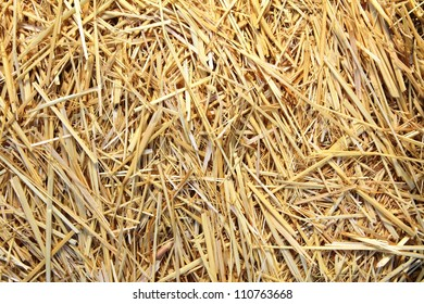 View to straw closeup as background