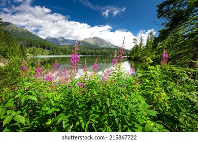 View to Strbske pleso in High Tatras during summer, Slovakia, Europe