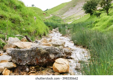 View of stream in the Cotswolds with sheep in the background. Image taken on Cleeve Hill near Cheltenham in Gloucestershire.