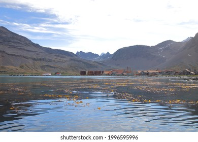 View of Stromness, former whaling station, at South Georgia Island - Shutterstock ID 1996595996