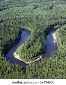 View of summer forest on heights of the flight of the bird.