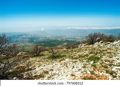 View from the summit ridge of Jabal Barouk Biosphere reserve at over six thousand feet, towards the distant snows of the Mount Lebanon Range, with Cedars of Lebanon  on slopes. A prime wildlife site.