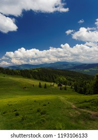 View from the summit of Wielka Rycerowa in Beskidy mountains