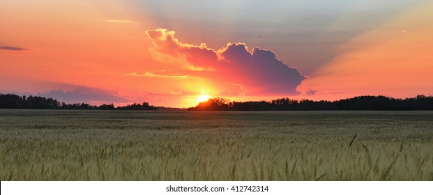 view of the sunset in Canadian Prairie