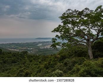 View from the suspension bridge at Yalong Bay Tropic Paradise Forest Park, Sanya, Hainan, China.