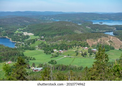 View of Swedish landscape; forest, fields, and lakes. High Coast area, Sweden