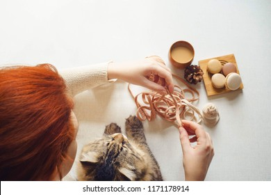 View of table above where cat and girl  hair drink coffee and unravel tangle. Spotted kitty and female with red hair drink espresso, get macarons and knits yarn. Flat lay. Top view.