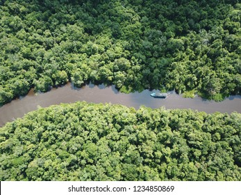 Bird's-eye view of Tanjung Puting national park, Borneo, Indonesia