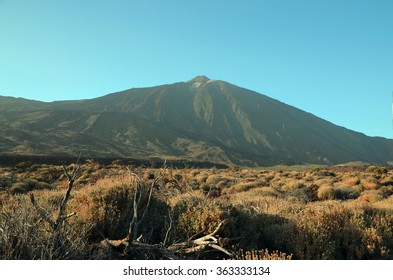 View of Teide National Park in Tenerife,Canary Islands.