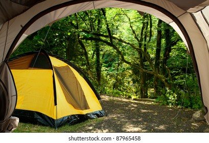 View from the tent on the picturesque forest
