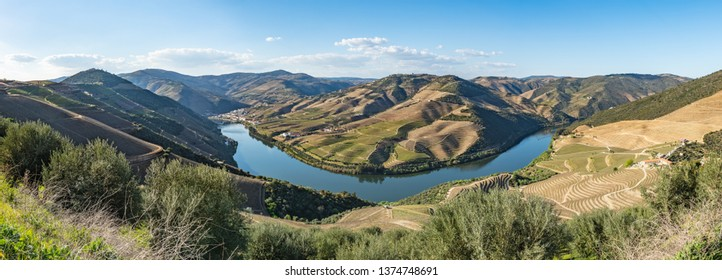 View of the terraced vineyards in the Douro Valley and river near the village of Pinhao, Portugal. Concept for travel in Portugal and most beautiful places in Portugal.