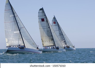 View of three yachts compete in team sailing event