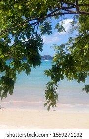 View through the curtain of green leaves onto turquoise to emerald waters of tropical sea and amazing El Nido Beach on the North East coast of Palawan Island, Phillipines.