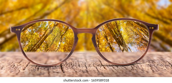 View through eyeglasses to nature - Shutterstock ID 1659589318