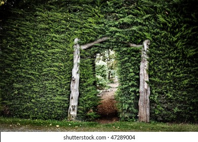 View through large hedge wall into another garden