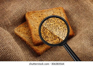 View through a magnifying glass to two toast bread. Wheat.