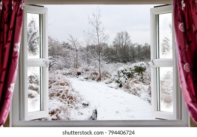 View through open window onto a beautiful snow covered nature path in winter in rural England. Red curtains hang in front of the modern double glazed window