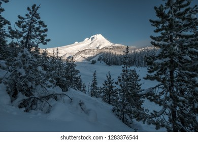 A view through the trees of Mt. Hood during a frosty, snowy, and clear blue sky day in the winter.