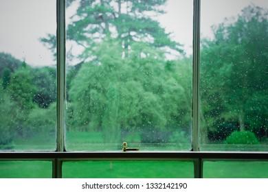 A view through a window of a garden on a rainy day