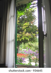 view through window out onto garden