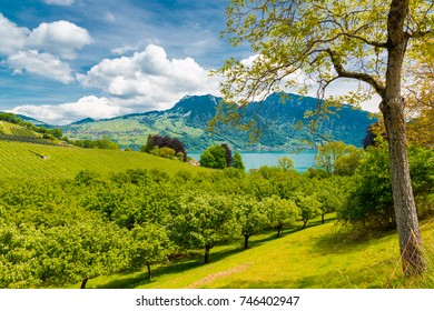 View of Thun lake in the Alps mountains, Switzerland.