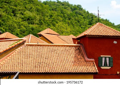 View of tile roofs house