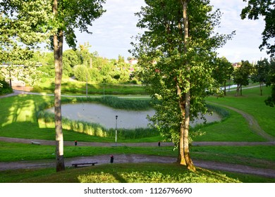 A view from the top of a hill showing a heart shaped pond between two trees that is covered with some reeds and is located in the very middle of a public park with some benches and paths everywhere