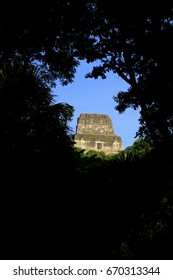 A view of the top of a Mayan pyramid, Tikal, Guatemala