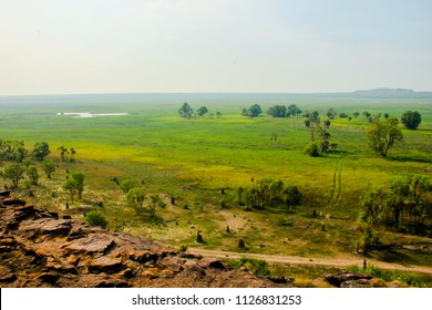 View from the top of the mountain in Litchfield and Kakadu National Park in Australia, showing a scenic grass landscapes with a few trees and bushes and termite hills and homes.