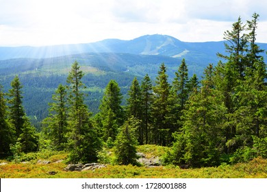 View from the top of mountain Zwercheck on the mount Grosser Arber in the National park Bayerischer Wald. Germany. - Shutterstock ID 1728001888
