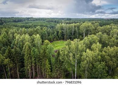 View from tourist tower in Mamerki Nazi bunker complex during WW2, Masuria region of Poland