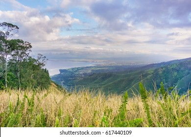 View towards Kahului from the Waihee ridge trail, Maui, Hawaii