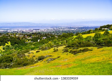 View towards Redwood City and Menlo Park; hills and valleys covered in green grass and wildflowers visible in the foreground, Silicon Valley, San Francisco bay, California
