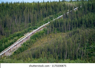 View of the Trans Alaskan Pipeline (TAPS) among the boreal forest wilderness of the interior of Alaska