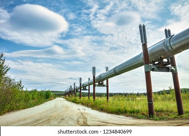 A view of the Trans-Alaska Pipeline near Yukon River Campground.