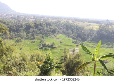 View in Trawas, East Java - Shutterstock ID 1992302246