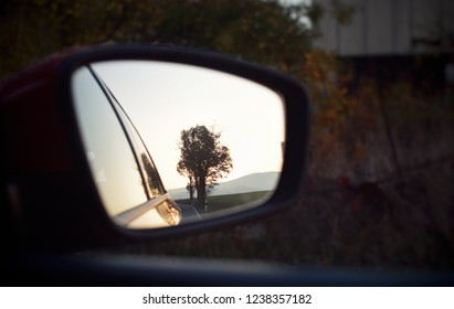 view of tree and sunset sky in car mirrow