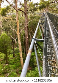 View of Tree Top Walk, suspension bridge 40 meters above the ground level at Valley of the GIANTS at Walpole-Nornalup National Park in the South West region of Western Australia