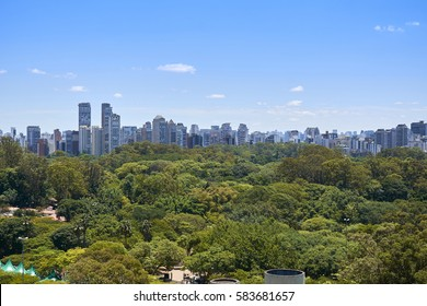 View of trees in Ibirapuera Park in the city of Sao Paulo, Brazil.