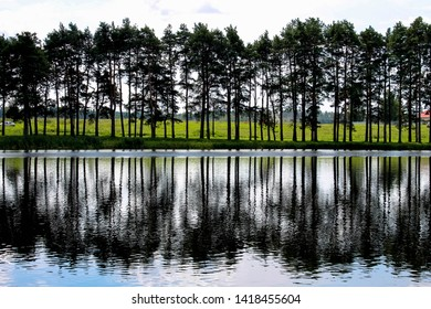 View of the trees reflected in the water from the side of the Mir Castle, Mir, Belarus