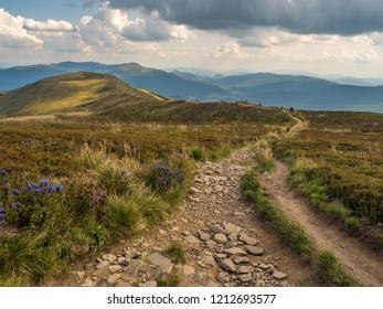View from the trekking on the Polonina Carynska in Bieszczady Mountains, Bieszczady County, Poland. Europe, Podkarpackie Voivodeship, Bieszczady, Carpathians,