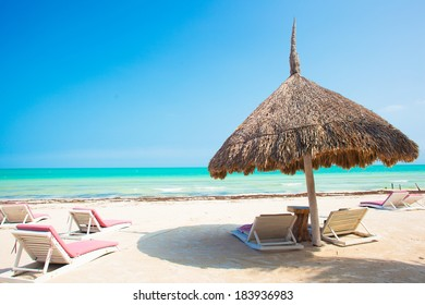 view of the tropical beach with umbrella and multiple beds